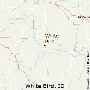 Best Places To Live In White Bird Idaho