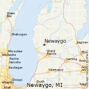 Newaygo,Michigan Map