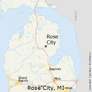 Rose_City,Michigan Map
