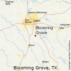 Blooming_Grove,Texas Map