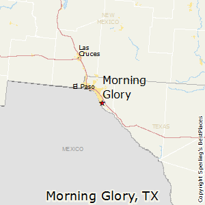 Morning_Glory,Texas Map