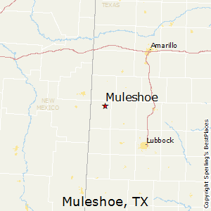 Muleshoe,Texas Map