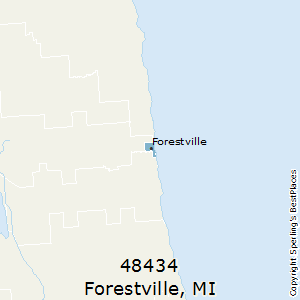 Forestville,Michigan County Map